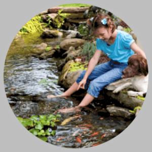Eco Ponds