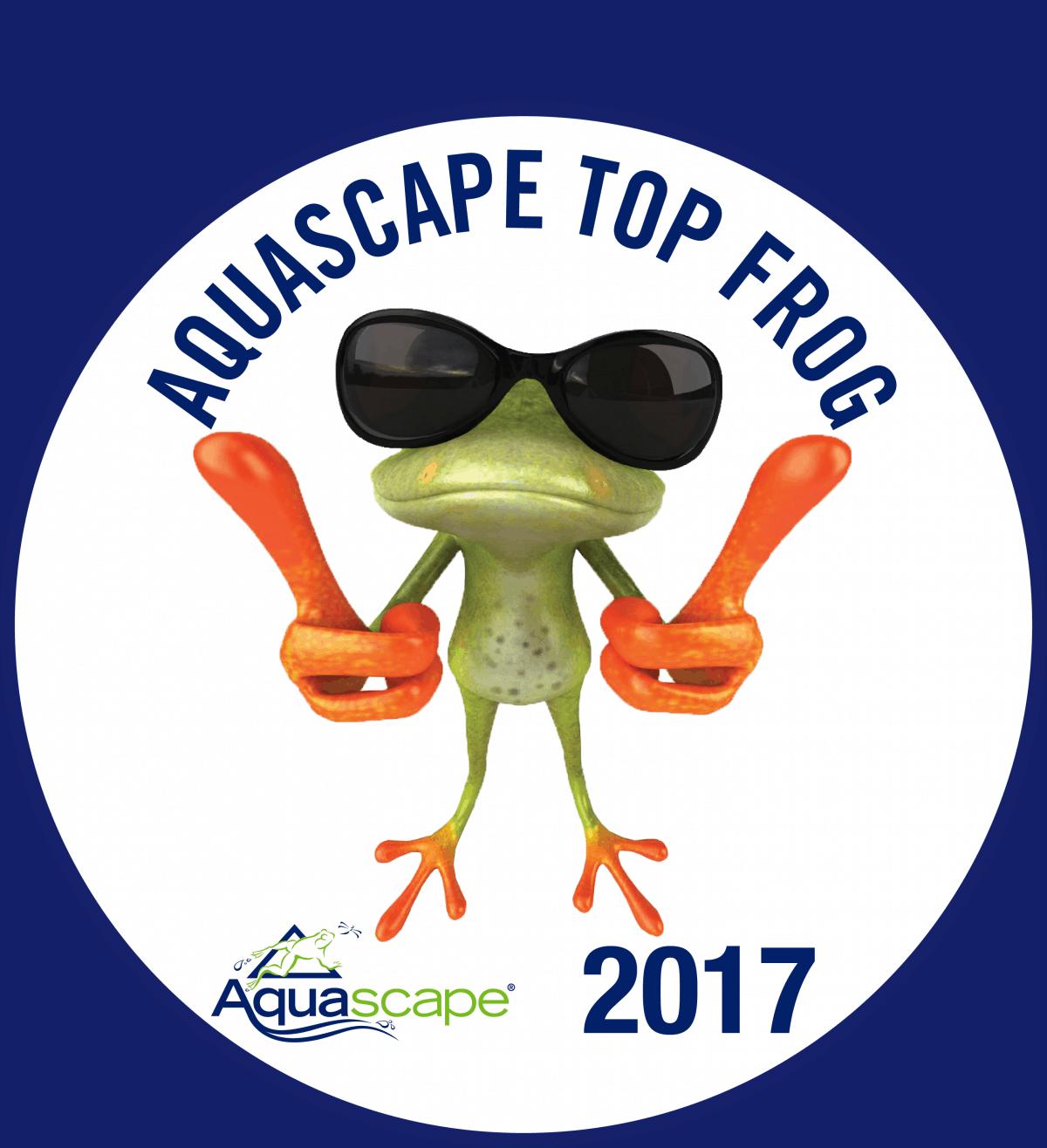 Top Frog