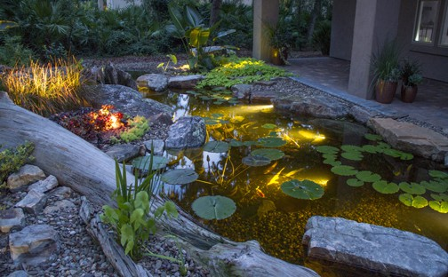 Led Pond Lighting Premiere Aquascapes