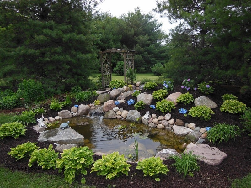 eco-system pond and waterfall with landscaping