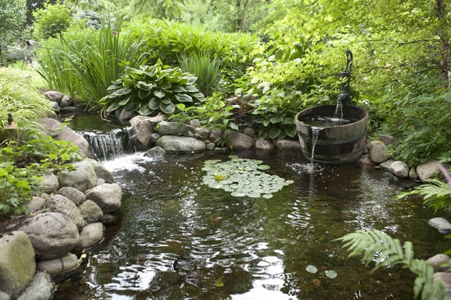 Waterfall Pond & Barrel Pump