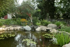 Water Pump Fountain Pond