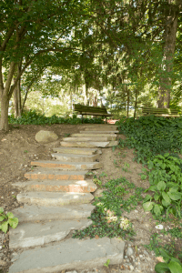 Slate stone steps leading up from the pond at Krider Gardens.