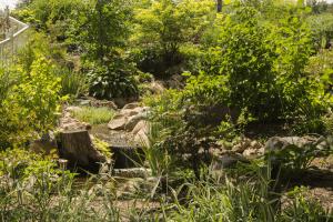 Second watefall running into the garden pond at Krider Gardens