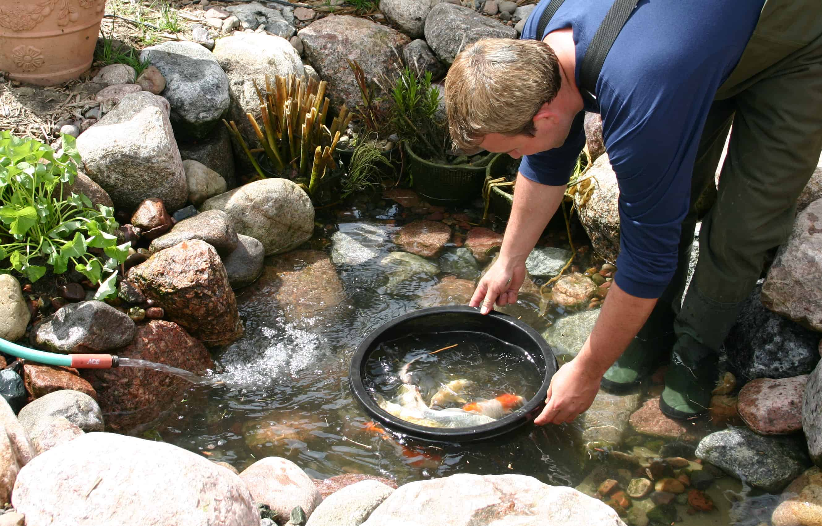 Spring pond cleanout service