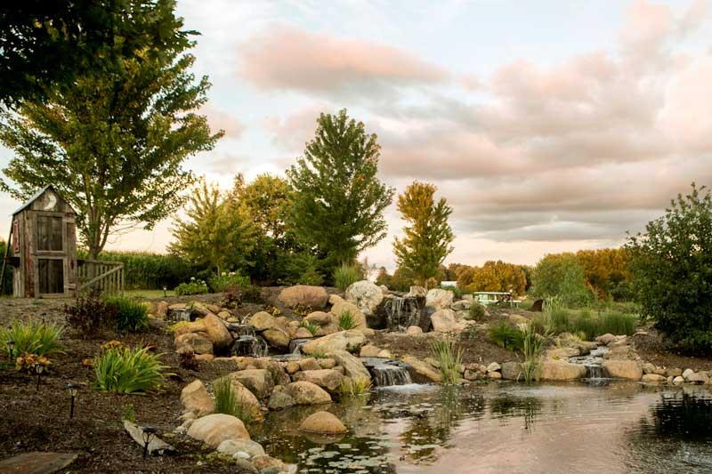 pond-wetland-biofalls_6951