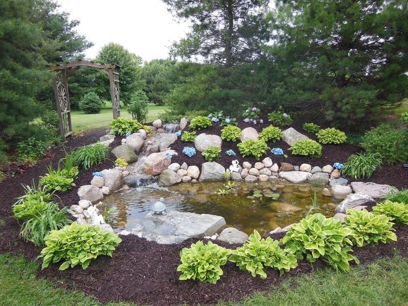 Middlebury-Ecosystem-Pond-primaryPrimary-edited