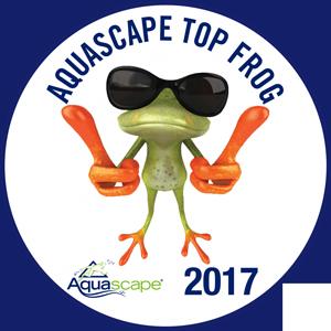 top-frog