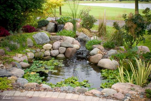 pond_spring_clean